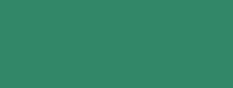 frills-florence-top